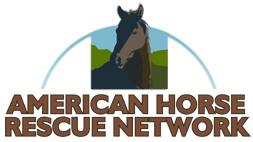 American Horse Rescue Network