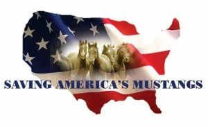 Saving America's Mustangs